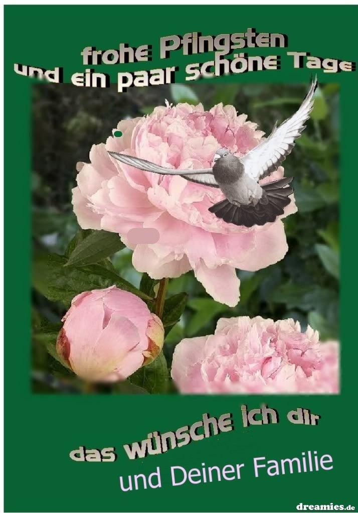 An den Beitrag angehängtes Bild: http://img5.dreamies.de/img/598/b/zgyomlgri5r.jpg